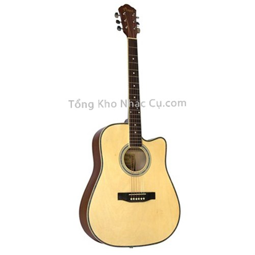 Đàn Guitar Acoustic Vines VA-4125N