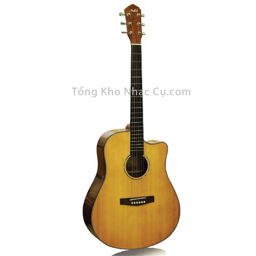 Đàn Guitar Acoustic Asolid 54CD