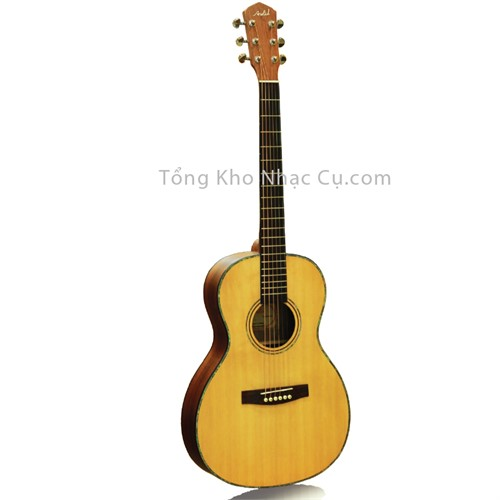 Đàn Guitar Acoustic Asolid 570 Limited