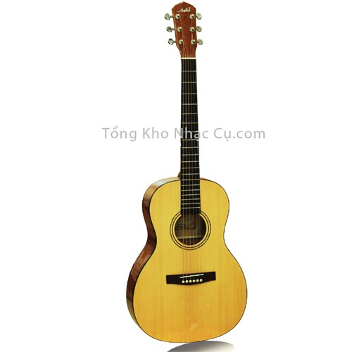 Đàn Guitar Acoustic Asolid AA Grab Mapple
