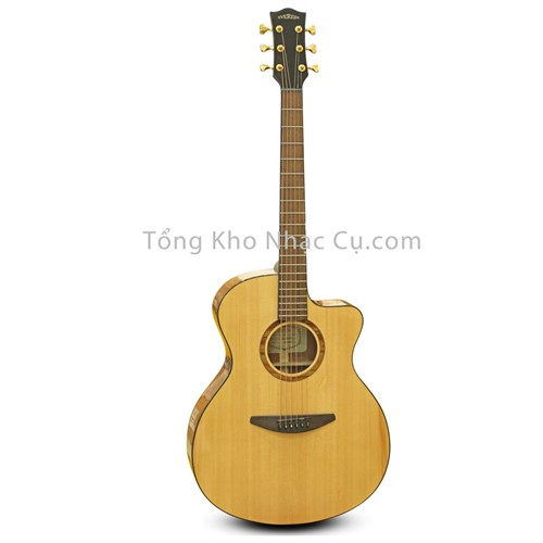 Đàn Guitar Acoustic Everest E100-AC