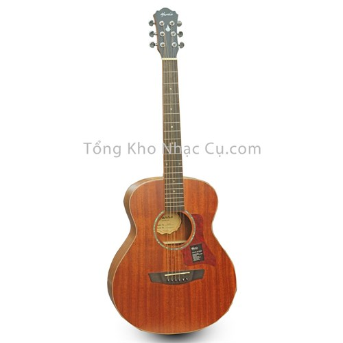 Đàn Guitar Acoustic Mantic BG2S