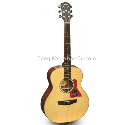 Đàn Guitar Acoustic Mantic BG1S
