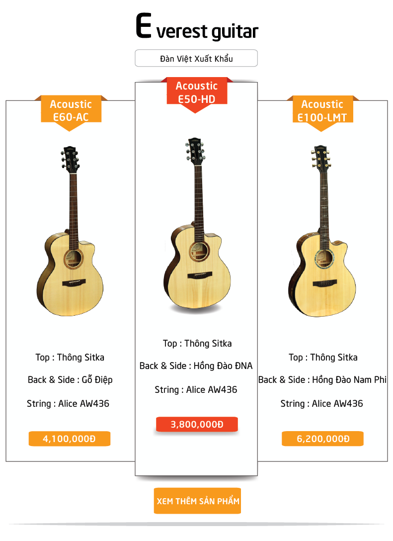 Everest guitar Việt