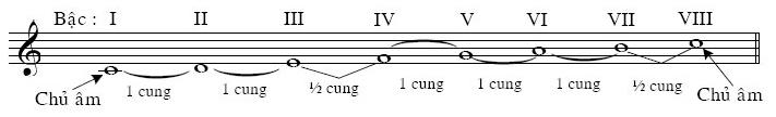Cấu tạo của Âm giai trưởng và các hợp âm trong âm giai trưởng: